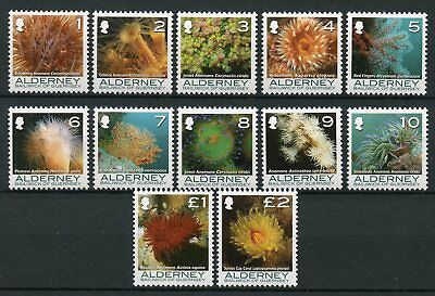 Alderney 2006 MNH Coral & Anemones Definitives Part I 12v Set Marine Stamps