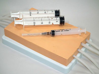 4 Vein Phlebotomy - IV Injection Training Pad