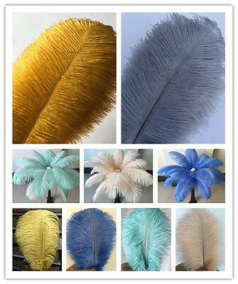 Wholesale 10-100pcs Special colors Natural Ostrich Feathers 6-24inches/15-60cm