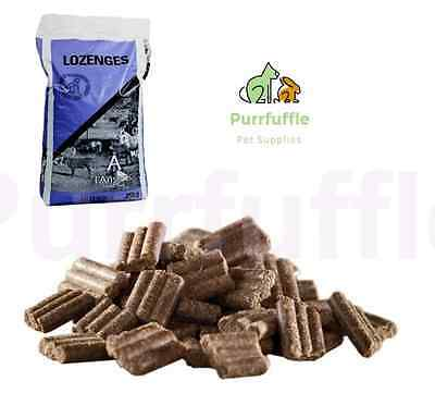 25KG LINSEED LOZENGES Horse Treats Food Feed Supplement Clicker Training Reward