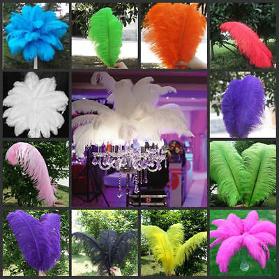 10PCS Real Natural Ostrich Feathers 10-12inch/25-30cm For Wedding Decoration US