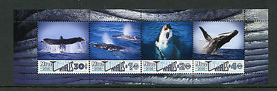 Niue 2016 MNH Humpback Whales 4v M/S Marine Mammals Animals Whale Stamps