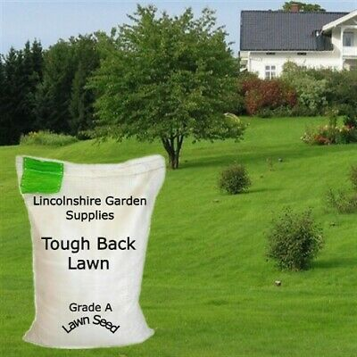 Grass Seed.TOUGH BACK LAWN MIX. (Seed Packs To Cover 20 - 50 - 100 -150  Sq M)