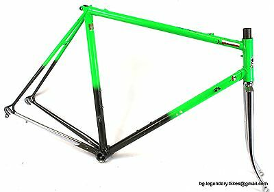 VINTAGE Race bike made in italy gipiemme dropouts Columbs Lugged Steel Frame set