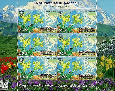 Kyrgyzstan KEP 2016 MNH Flora of Kyrgyzstan Orchid Iris 6v M/S Flowers Stamps