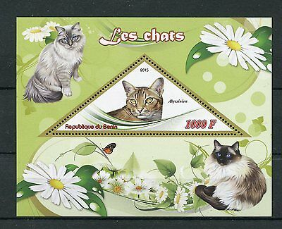 Benin 2015 MNH Cats 1v S/S Pets Abyssinian Cat Stamps