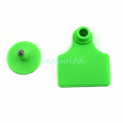 100PCS Green Blank  Plastic Livestock Ear Tag Animal Tag for Goat Sheep Pig