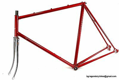 VINTAGE Race bike Benotto made in Italy Lugged Steel Frame set Campagnolo XLarge