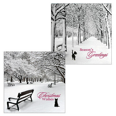Black Cat Luxury Christmas Cards Twin Pack of 10 Frosty Morning Xmas Cards NEW