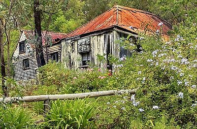 650 Photographic Images Of Old Shacks, Ghost Towns,& Dirlect Buildings Etc On Cd