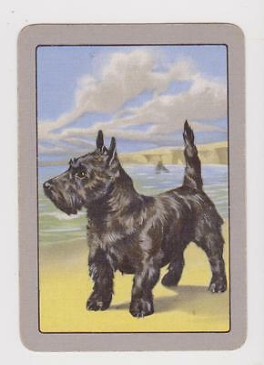 Standing Proud X 1 Only Single Vintage Playing/swapcard...highland Terrier