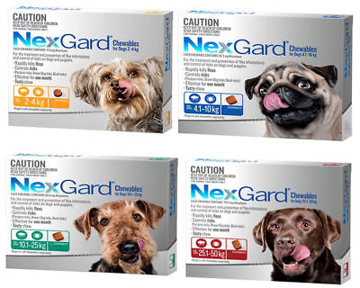 2 Chews Nexgard for Dogs Tick and Flea Control Flea Tablets for Dogs All Sizes