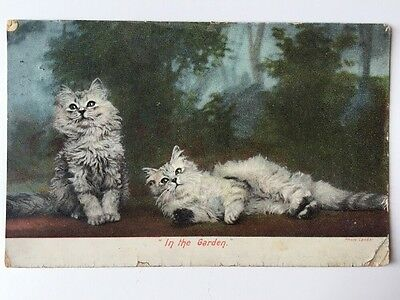 Vintage Postcard - Animals - Cats - Harhmanns # 1527/11 - 1907 - BOTTOMLEY
