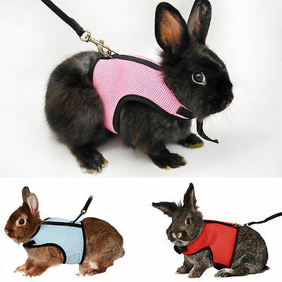 Small Animal Hamster Rabbit Guinea Rat Ferret Breathable Harness With Leash Lead
