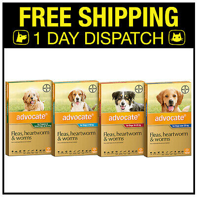 Advocate Flea, Heartworm & Worm Topical For Dog - 3 Pack - All Sizes