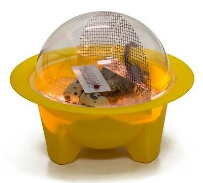 GQF 9100 CHICK-BATOR MINI DOME EGG CHICKBATOR INCUBATOR - FAST 3-4 Day Shipping!