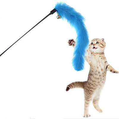 Kitten Funny Cat Pet Fun Toy Teaser Turquie Plume Interactive Fil Chaser Wand