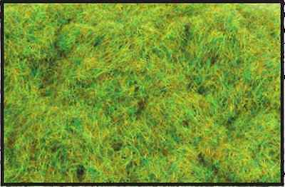 6mm Spring Static Grass 20g - All gauge scenery - PECO PSG-601 - free post