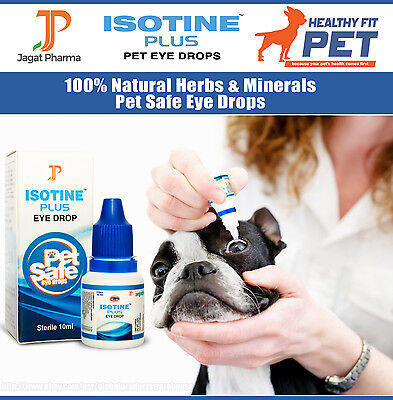 Best DOG/CAT Eye Drops Cataract, Glaucoma, Non-Carnosine (NAC), Ethos Cataracts