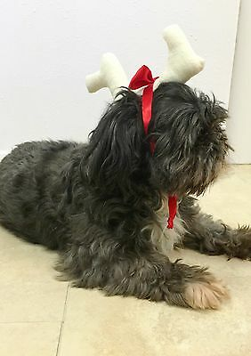 The Grinch Max Antler Dog Cat Pet Costume