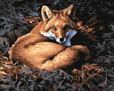 """DIY Paint By Number 16""""*20"""" Kit Lovely Fox On Canvas With Nice Box"""