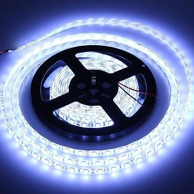 Super Bright Cool/Cold White 5050 SMD 300Led Light Strip Ribbon 5M/10M/15M/20M