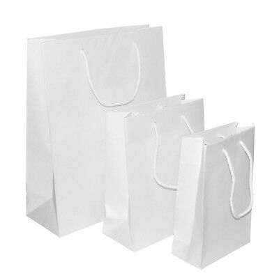 White Rope Handle Paper Party and Gift Carrier Bag / Luxury Bags With Handles