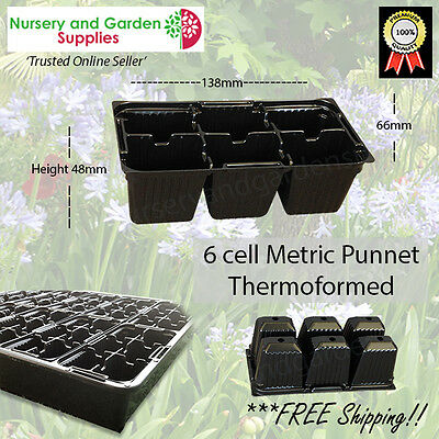 6 cell Seedling Punnet Metric Black CM6 Thermoformed Plastic Propagation