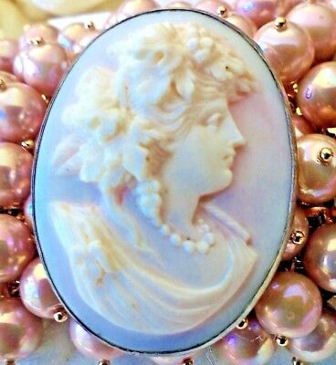 Cameo  Vintage  High Relief  Portrait Pink  Conch Shell   Sterling  Silver  Mint