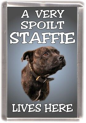 "Staffordshire Bull Terrier Fridge Magnet ""A VERY SPOILT STAFFIE LIVES HERE"""