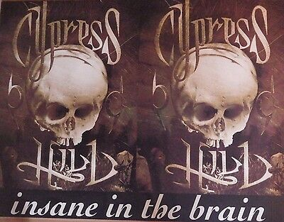 "MUSIC POSTER~Cypress Hill 1993 ""Insane In the Brain"" 30x40"" Black Sunday Skulls~"