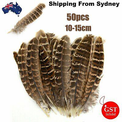 50pcs Hen Pheasant Wing Brown Feather Beautiful 10-15cm DIY Wedding Craft Decor