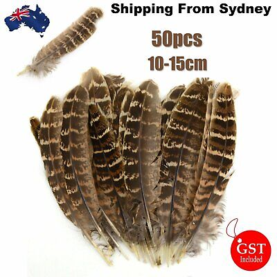 50pcs Natural Pheasant Tail Feathers 10-15cm DIY Art Craft Millinery Vase Decor