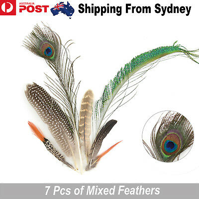 7pcs Pheasant Mixed Feather Colorful Feathers 10-40cm DIY Wedding Craft Decor