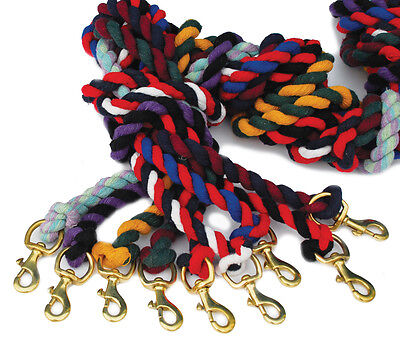 Solid Strong Brass Clip Leadrope For Headcollar 21 Colours