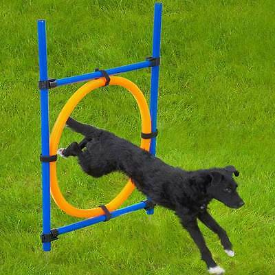 Barkshire Lightweight and Compact Dog Agility Jumping Hoop - Includes Carry Bag