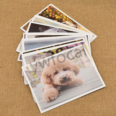 Cute Dogs Puppy Printed Postcards Photo Greeting Card Travel Gift 32pcs/Set