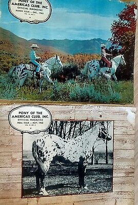 Two Pony of the Americas Club POA Magazines Dec 1965, May 1966 Ranch, Foal