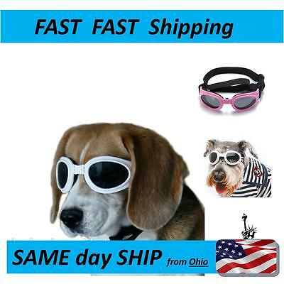 PET Sunglasses - SAME DAY SHIPPING FROM OHIO