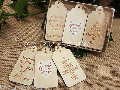 Pack 6 Assorted Merry Christmas Gift Tags Wood Reindeer Rose Gold Luggage Label