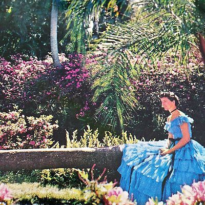 Cypress Gardens Southern Belles Postcard Florida Wishing Palm Unused Vtg CK 38