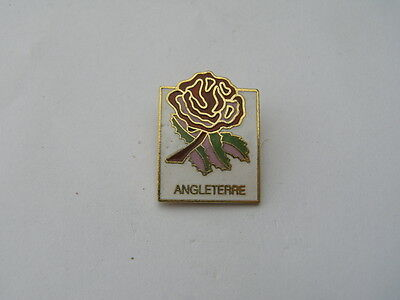 pins rose angleterre