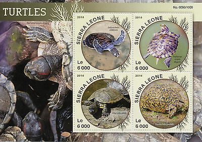 Sierra Leone 2016 MNH Turtles 4v M/S Reptiles Leopard Tortoise Sea Turtle Stamps