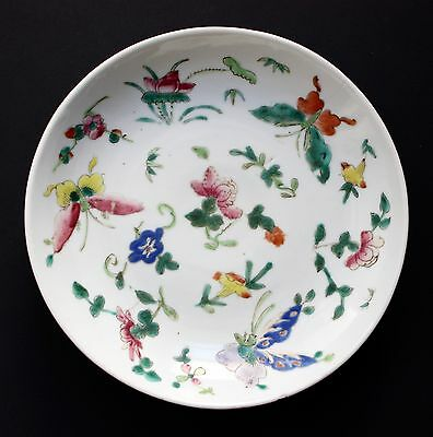 Famille Rose Porcerlain Plate, Butterflies Mark Endless Knot China Kangxi Period