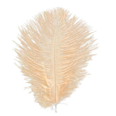 """5 Champagne 5-6"""" (12-15 Cm ) Drabs Ostrich Feather Hurl First Grade Fly Fishing"""