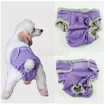Femme Pet Dog Puppy Physiological Sanitary Pant Diaper Underwear Violet XS