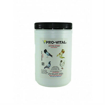 Pigeon Product - Brewers Yeast Plus by ProVital for Racing Pigeons
