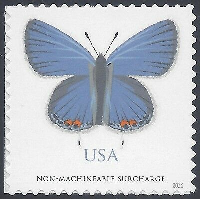 #5136 (Non-machineable Rate) Eastern Tailed-Blue Butterfly 2016 Mint NH