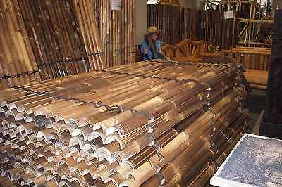 Bamboo Panel Fenceing $37.00 2M TALL 1M WIDE