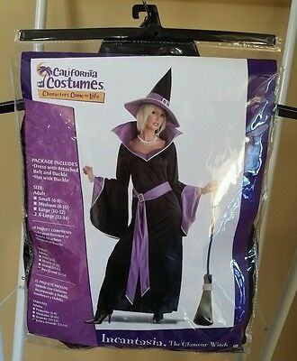 Incantasia the Glamour Witch Costume  X-Large (12-14) - Used Once